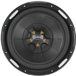 Soundstorm 10in 1800w Cl Series Sub